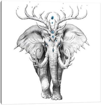 Elephant Soul Canvas Art Print