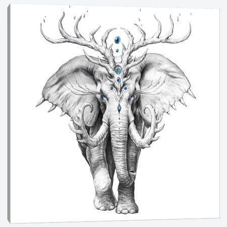Elephant Soul Canvas Print #JOJ27} by JoJoesArt Art Print