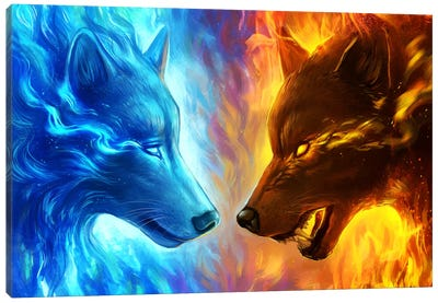 Fire And Ice Canvas Art Print