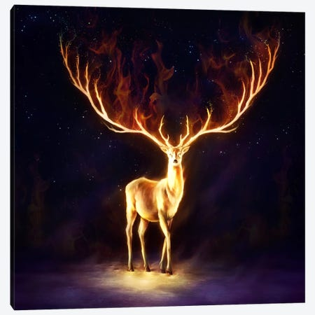 Firewalker Canvas Print #JOJ29} by JoJoesArt Canvas Artwork