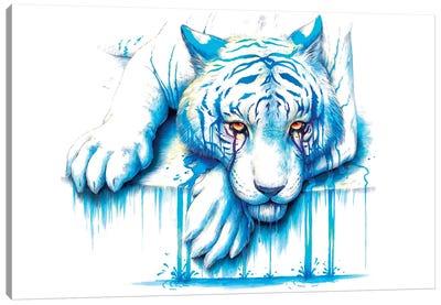 Blue Tears Canvas Art Print