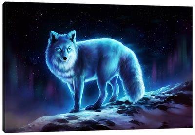 Ice Fox Canvas Art Print