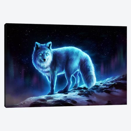 Ice Fox Canvas Print #JOJ33} by JoJoesArt Art Print