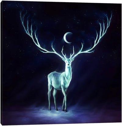 Nightbringer Canvas Art Print