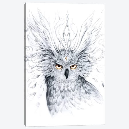Owl Canvas Print #JOJ42} by JoJoesArt Canvas Artwork