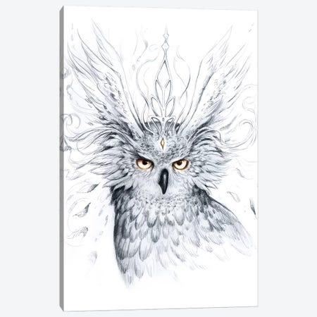 Owl Canvas Print #JOJ42} by JoJoesArt Canvas Artwork