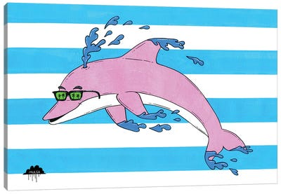 Dolphin Pete Canvas Art Print