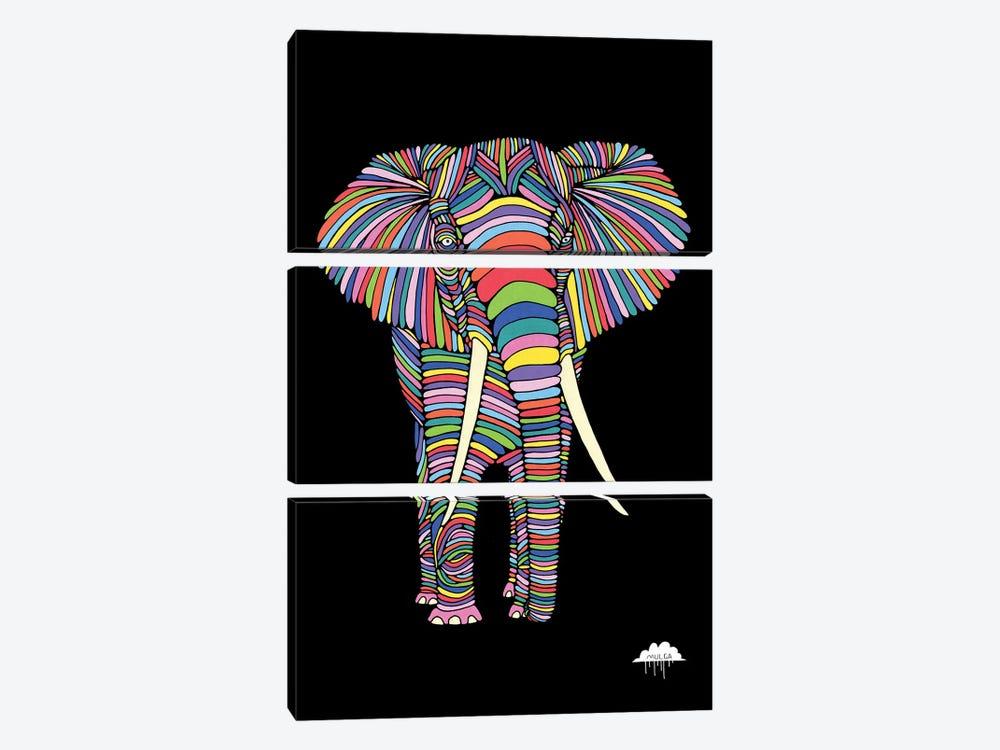 Eden The Enigmatic Elephant, Black Background by MULGA 3-piece Canvas Art