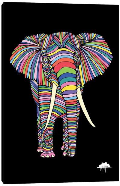 Eden The Enigmatic Elephant, Black Background Canvas Art Print