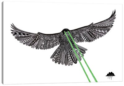 Falcon With Lazer Beams Canvas Art Print