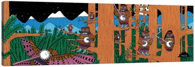 Mulgas Magical Musical Creatures: Owls Canvas Art Print