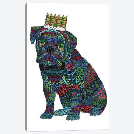 Billy The Bulldog Canvas Print #JOL40} by MULGA Canvas Wall Art