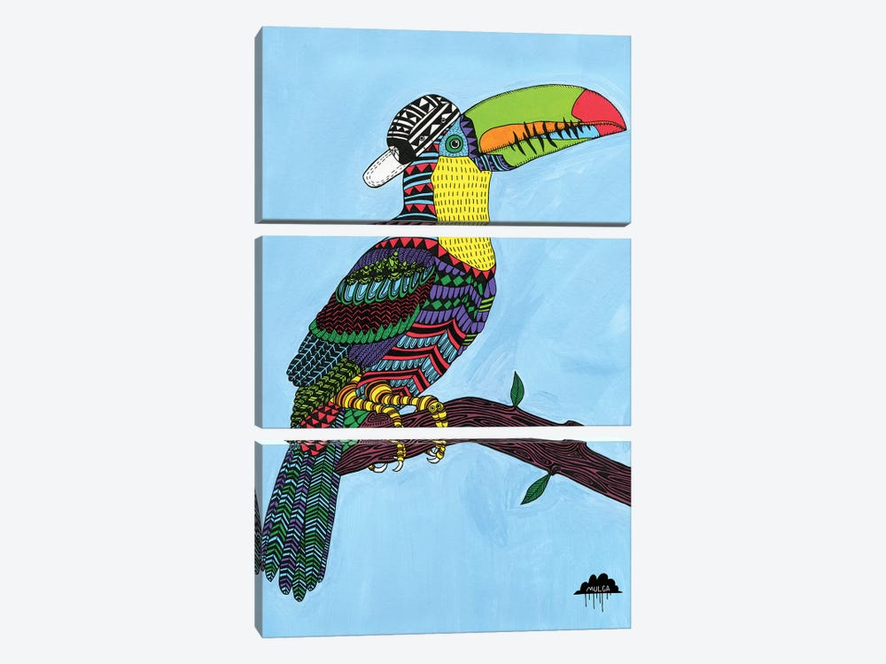Timothy The Toucan by MULGA 3-piece Canvas Art Print