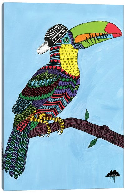 Timothy The Toucan Canvas Art Print