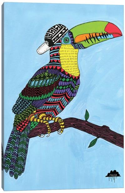 Timothy The Toucan Canvas Art Print