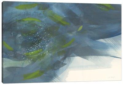 Scatter Canvas Art Print