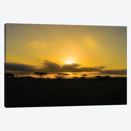 The Sunset Canvas Print #JOR118} by Anders Jorulf Canvas Artwork