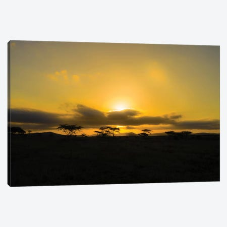 The Sunset Canvas Print #JOR118} by Anders Jorulf Canvas Artwork