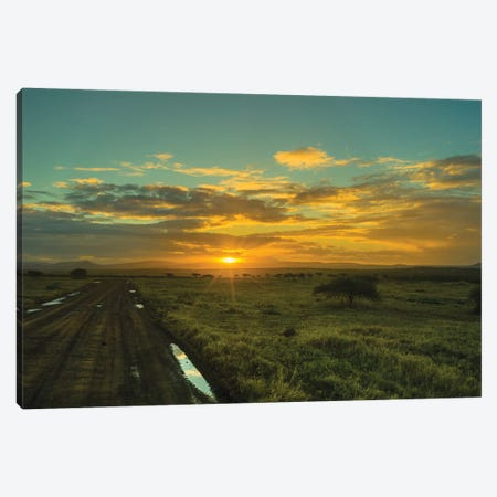 The Wildlife Road Canvas Print #JOR119} by Anders Jorulf Canvas Artwork