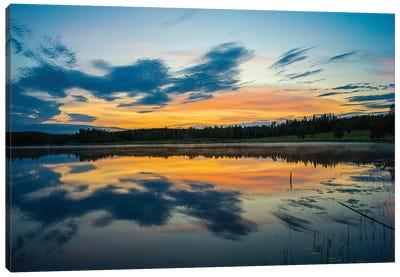 Summer In Sweden Canvas Art Print