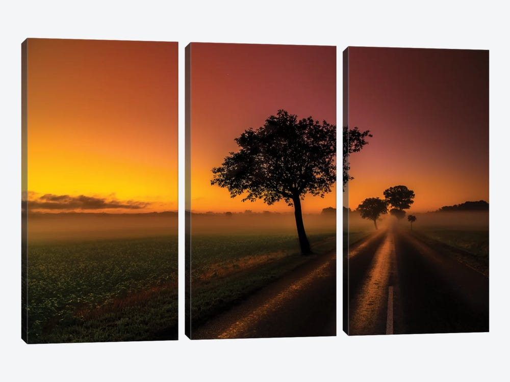 Morning by Anders Jorulf 3-piece Canvas Print