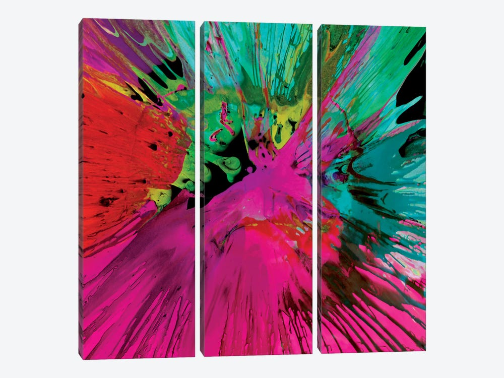 Unabashed I by Josh Evans 3-piece Canvas Wall Art