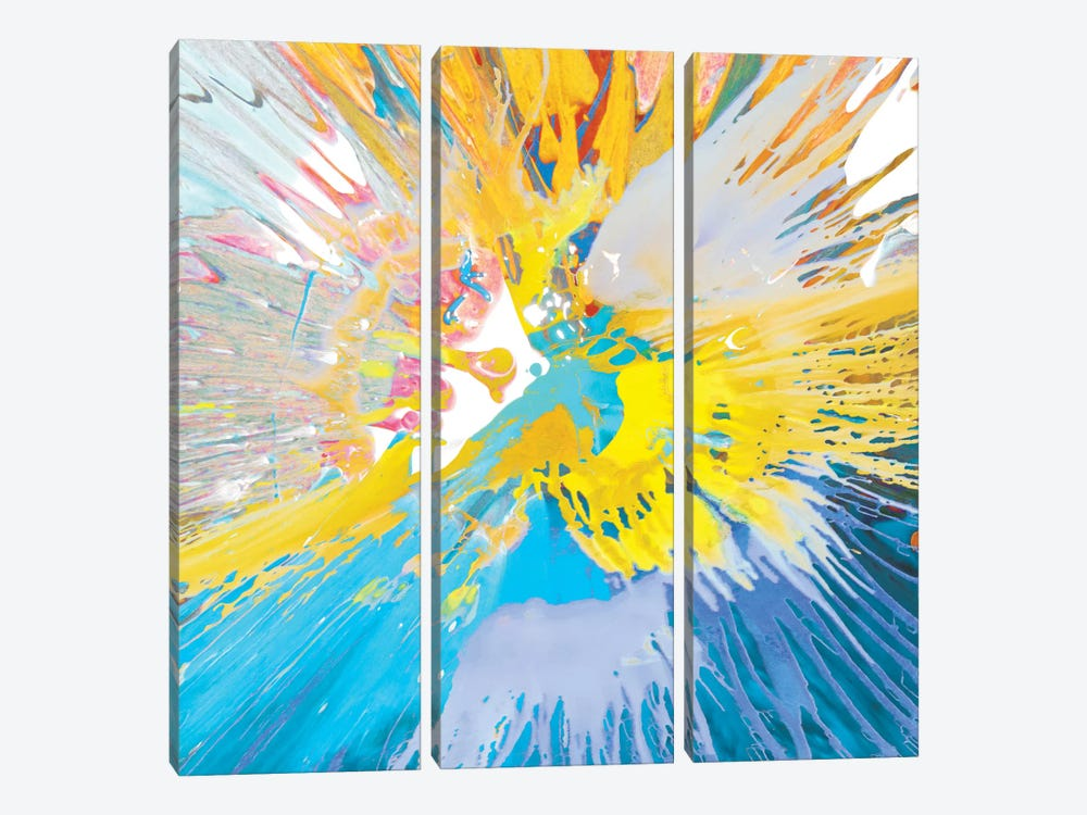 Unabashed IV by Josh Evans 3-piece Canvas Art