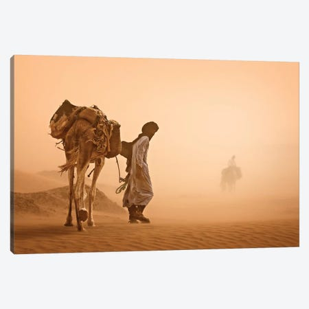 Sand Storm Canvas Print #JOV1} by Jovelino Canvas Art Print