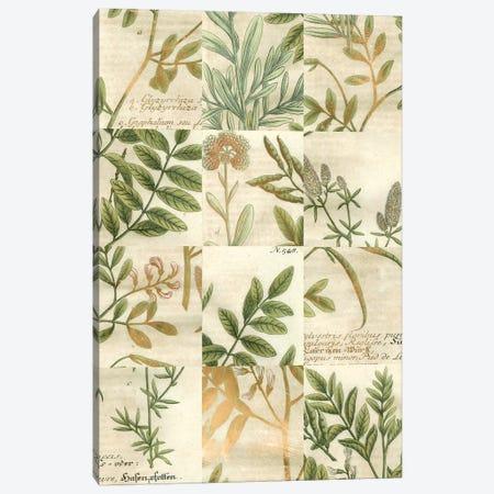 Garden Grid I Canvas Print #JOW1} by Johann Wilhelm Weinmann Canvas Wall Art