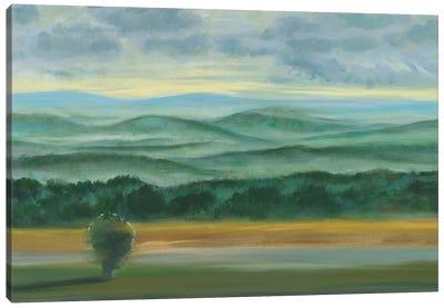 Misty Mountain View II Canvas Art Print