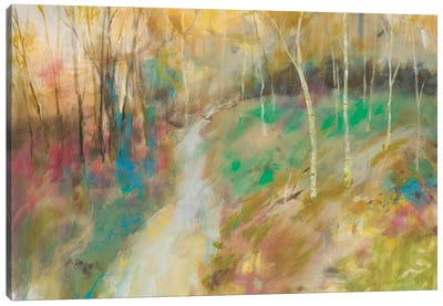 Wooded Pathway I Canvas Art Print