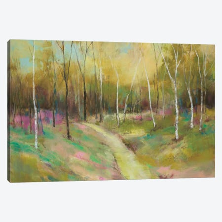Wooded Pathway II Canvas Print #JOY25} by Julie Joy Canvas Wall Art