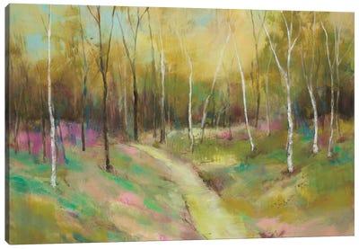 Wooded Pathway II Canvas Art Print
