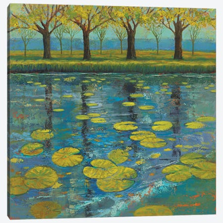 Shimmering Springs II Canvas Print #JOY38} by Julie Joy Canvas Artwork