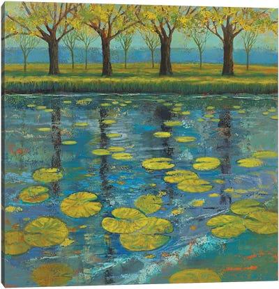 Shimmering Springs II Canvas Art Print
