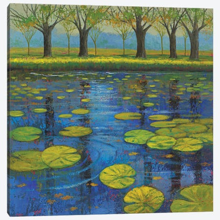 Shimmering Springs III Canvas Print #JOY39} by Julie Joy Canvas Art