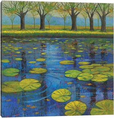 Shimmering Springs III Canvas Art Print