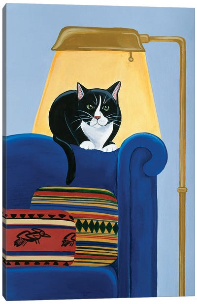 Catmandu Keeping Warm Canvas Art Print