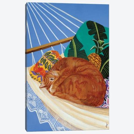 Catnapping In A Hammock Canvas Print #JPA15} by Jan Panico Canvas Art