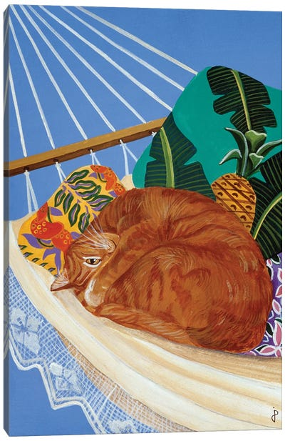 Catnapping In A Hammock Canvas Art Print