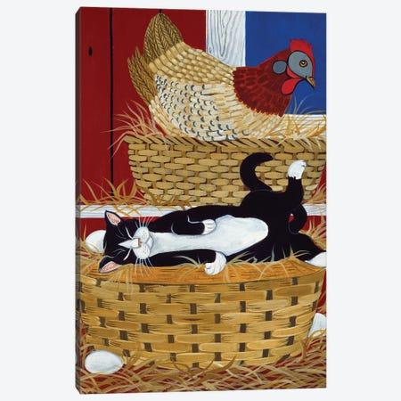 Good Place For A Nap Canvas Print #JPA21} by Jan Panico Canvas Artwork