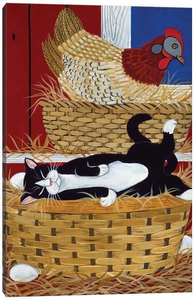 Good Place For A Nap Canvas Art Print