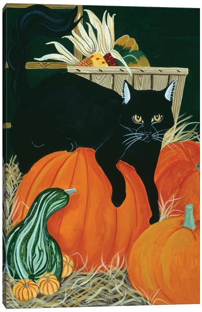 Harvest Cat Canvas Art Print