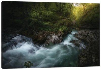 Gorge 1. Canvas Art Print