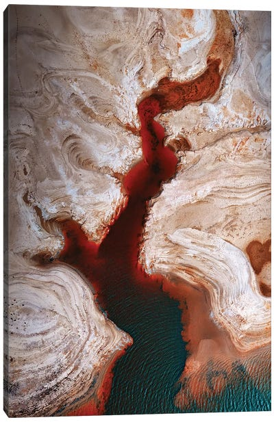 Some Earth 1. Canvas Art Print