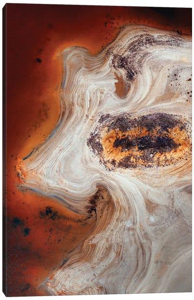 Some Earth 2. Canvas Art Print