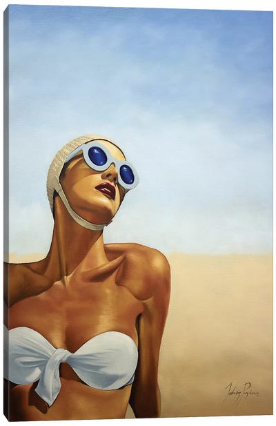 Sundrenched Canvas Art Print