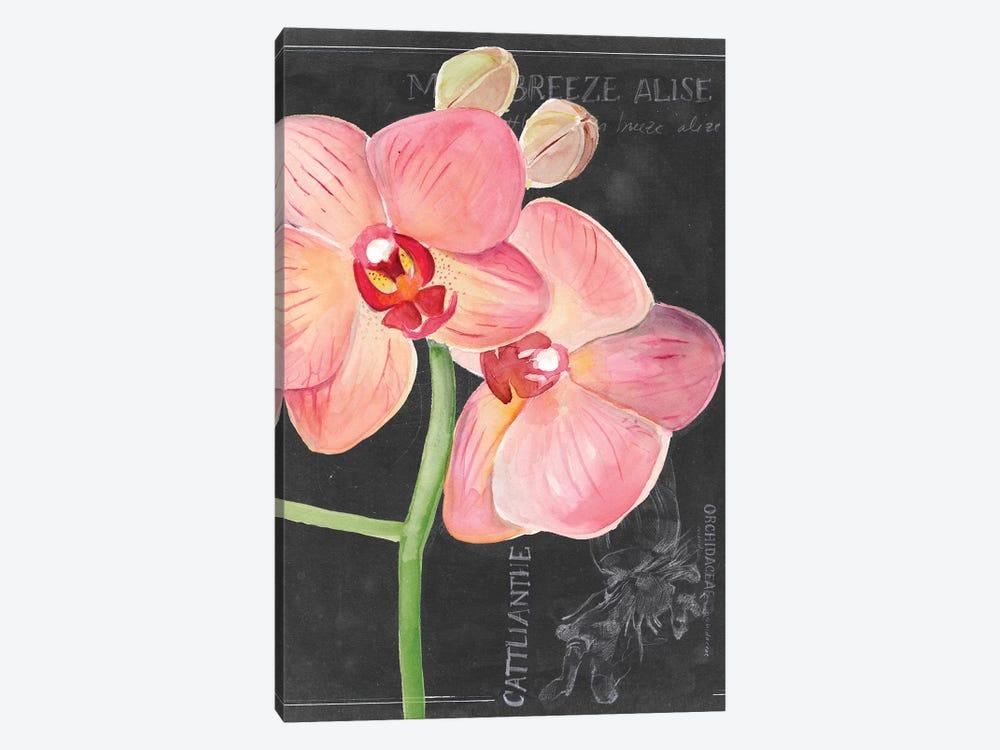 Chalkboard Flower I by Jennifer Paxton Parker 1-piece Canvas Art