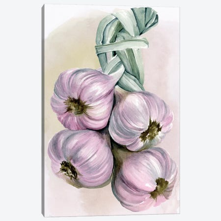 Garlic Braid I Canvas Print #JPP121} by Jennifer Paxton Parker Canvas Art Print
