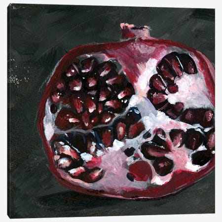 Pomegranate Study on Black I Canvas Print #JPP133} by Jennifer Paxton Parker Canvas Artwork